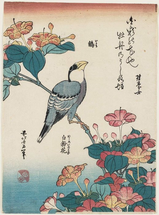 Order Museum Quality Reproductions : Hawfinch And Marvel-of-peru by Katsushika Hokusai (1760-1849, Japan) | WahooArt.com