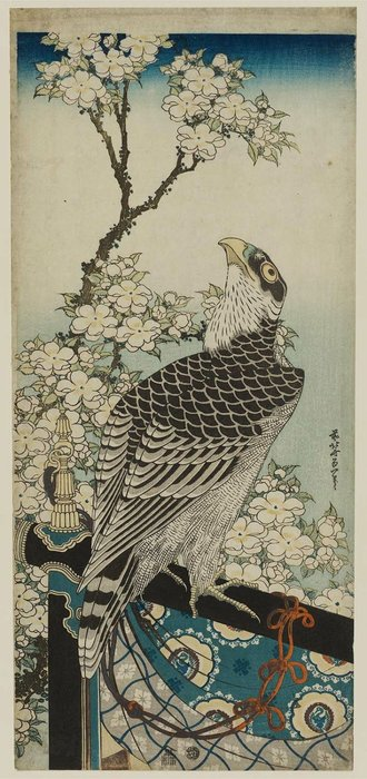 Hawk And Cherry Blossoms by Katsushika Hokusai (1760-1849, Japan) | Art Reproduction | WahooArt.com