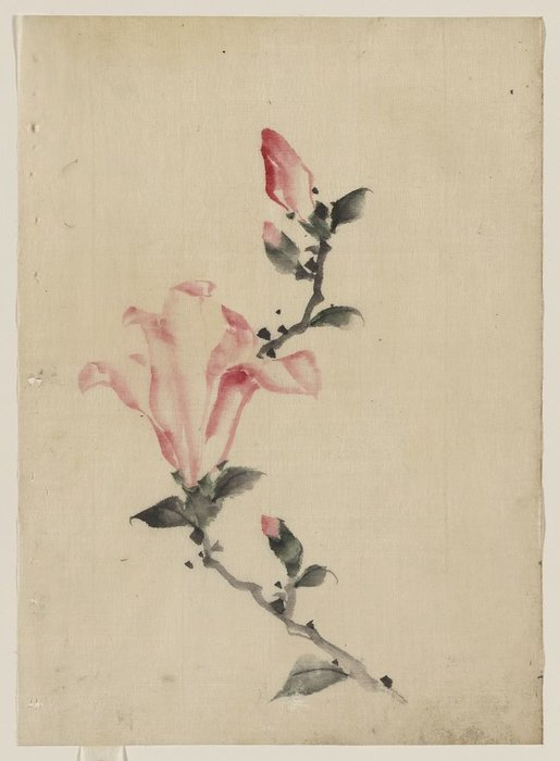 Large Pink Blossom On A Stem With Three Additional Buds by Katsushika Hokusai (1760-1849, Japan)
