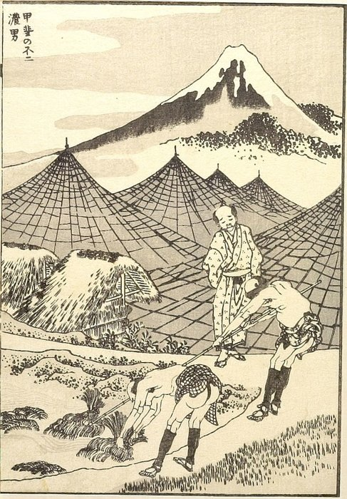 The Farmland Of Fuji In Kai Province by Katsushika Hokusai (1760-1849, Japan)