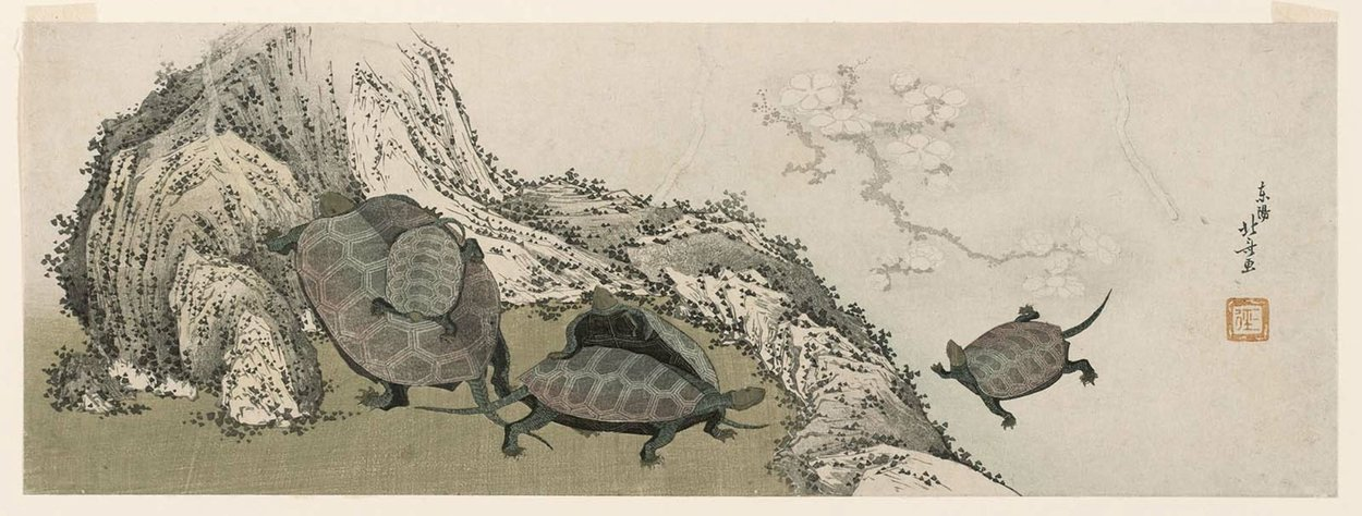 Turtles And Reflected Plum Branch by Katsushika Hokusai (1760-1849, Japan) | Art Reproduction | WahooArt.com