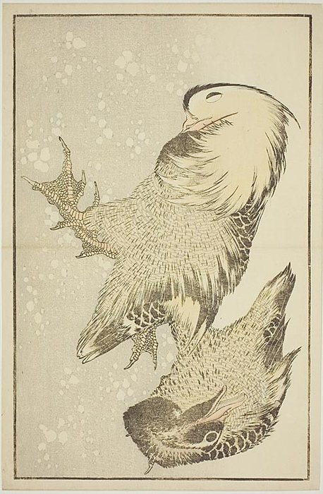 Two Waterfowl by Katsushika Hokusai (1760-1849, Japan)