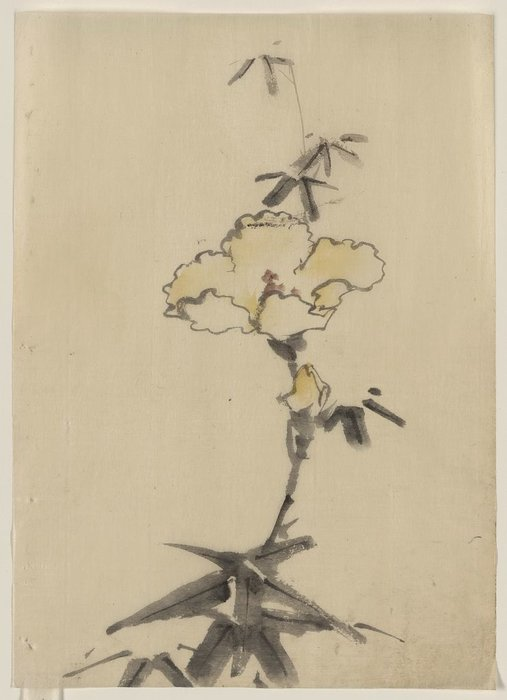 Yellow Blossom With Bud On A Stalk Above Leaves by Katsushika Hokusai (1760-1849, Japan)
