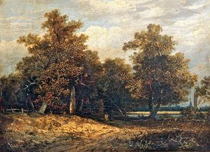 John Paul - Wooded Landscape
