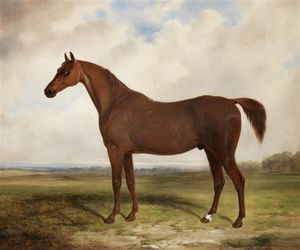 William Barraud - A Chestnut Horse In A Landscape
