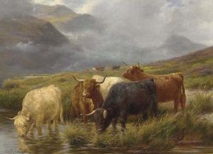 Claude Cardon - Highland Cattle Watering
