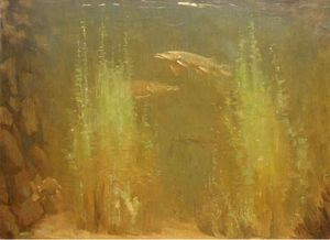 Order Famous Paintings Reproductions : Pike Swimming by Gerrit Willem Dijsselhof (1866-1924, Netherlands) | WahooArt.com