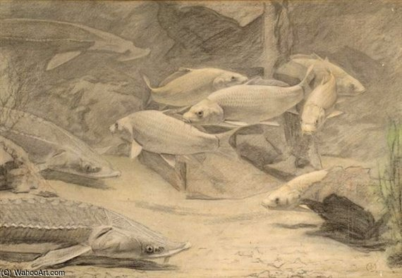Sturgeon And Carps by Gerrit Willem Dijsselhof (1866-1924, Netherlands)