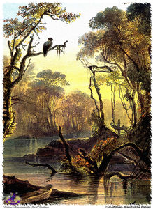Karl Bodmer - sharper native americans (11)