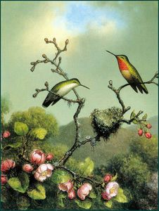 Martin Johnson Heade - RubyThroat of North America