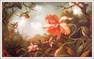 Martin Johnson Heade - two hummingbirds and two varieties of orchids