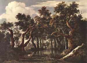 Jacob Isaakszoon Van Ruisdael (Ruysdael) - The Marsh in a Forest