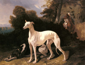Alfred De Dreux - A greyhound in an extensive landscape