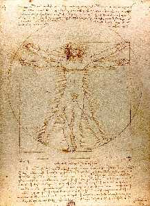 Leonardo Da Vinci - Vitruvian Man - (Famous paintings reproduction)