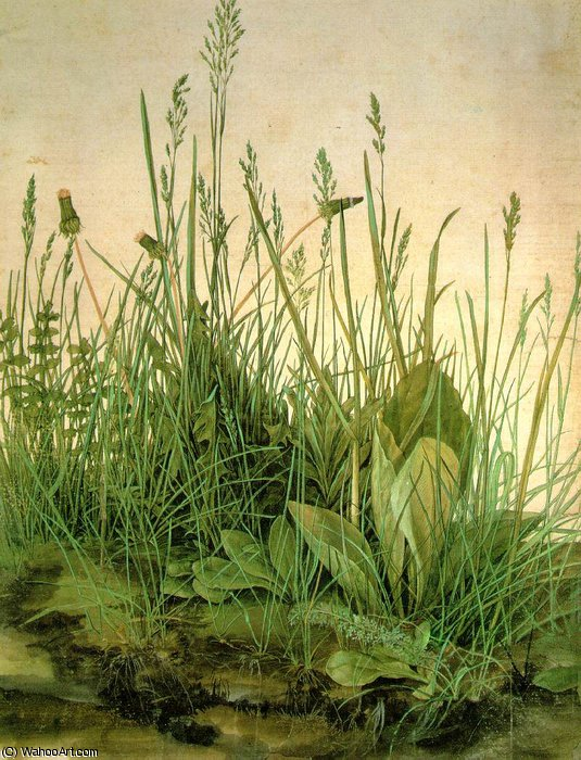THE LARGE TURF,1503, WATER COLOUR,Graphische Sammlung by Albrecht Durer (1471-1528, Italy)
