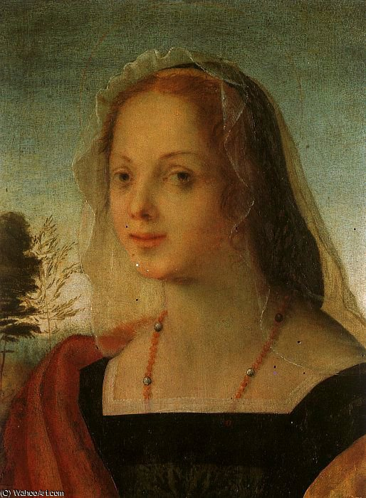 Portrait of a Young Woman by Rosso Fiorentino (1495-1540, Italy) | Painting Copy | WahooArt.com