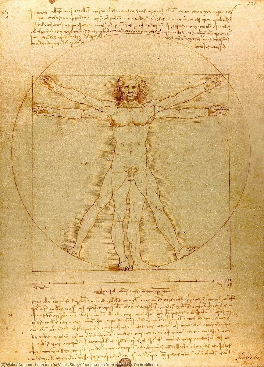 Study of proportions from Vitruvius's De Architectu by Leonardo Da Vinci (1452-1519, Italy)