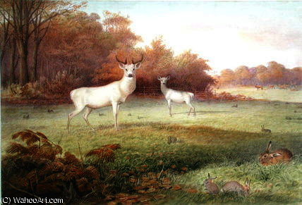 The knowsley menagerie by Joseph Wolf (1820-1899, Germany) | Art Reproduction | WahooArt.com