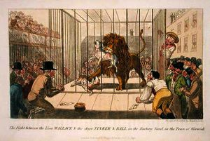 Theodore Lane - The Fight between the Lion Wallace and the Dogs Tinker and Ball in the Factory Yard in the Town