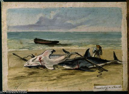 Man measuring two dead sharks on a beach by Thomas Baines (1820-1875, United Kingdom)