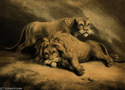 Studies of lions by Samuel Howitt (1756-1822, United Kingdom) | Paintings Reproductions Samuel Howitt | WahooArt.com