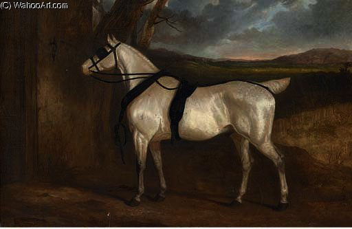 A grey carriage horse by Charles Hancock (1802-1827, New Zealand) | Museum Art Reproductions Charles Hancock | WahooArt.com