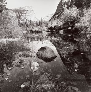 Lee Friedlander - Yosemite national park, california