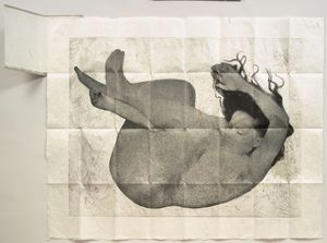 Kiki Smith - Free fall