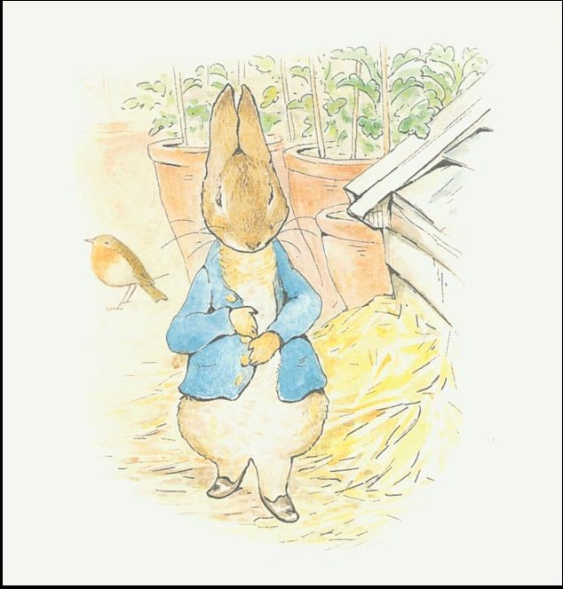 Peter rabbit 10a - (11x11) by Beatrix Potter (1866-1943)