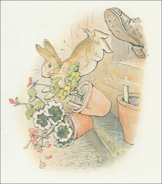 Peter rabbit 20a - (11x12) by Beatrix Potter (1866-1943)