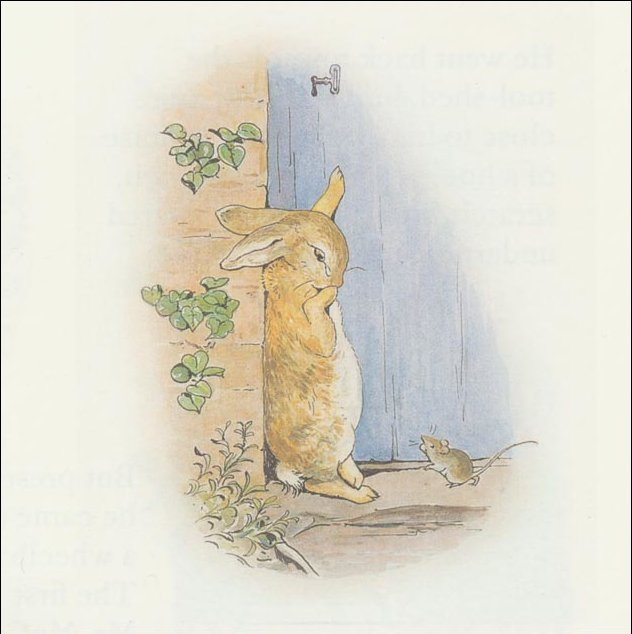 Peter rabbit 23a - (11x11) by Beatrix Potter (1866-1943)