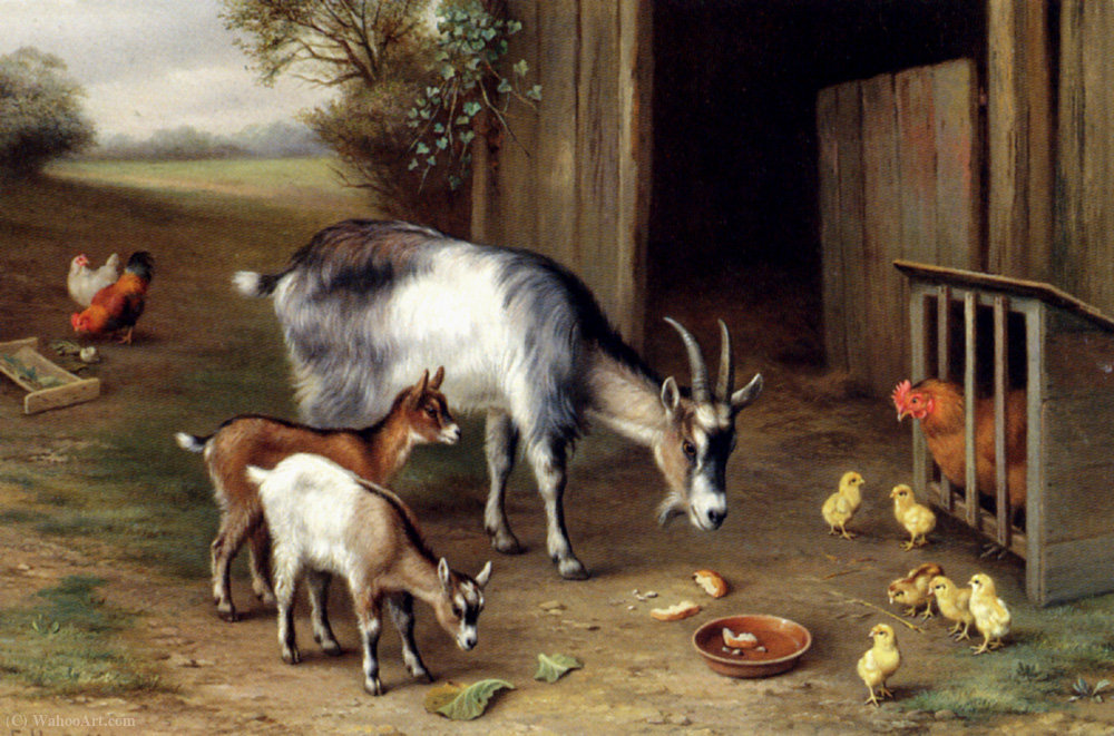 Goats and poultry by Edgar Hunt