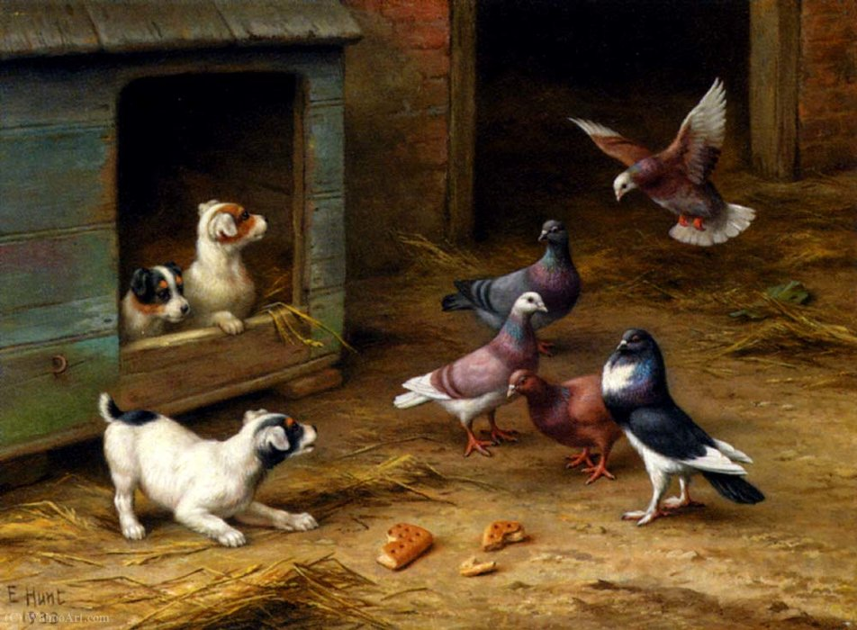Puppies and pigeons playing by a kennel by Edgar Hunt