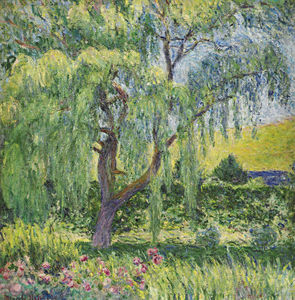 Blanche Hoschedé-Monet - Giverny, Willow and Roses