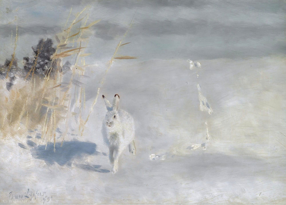 Winterhare (Snow Hare), (1932) by Bruno Liljefors