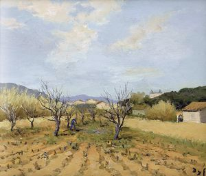 Marcel Dyf - Vineyard at Terres Rouges