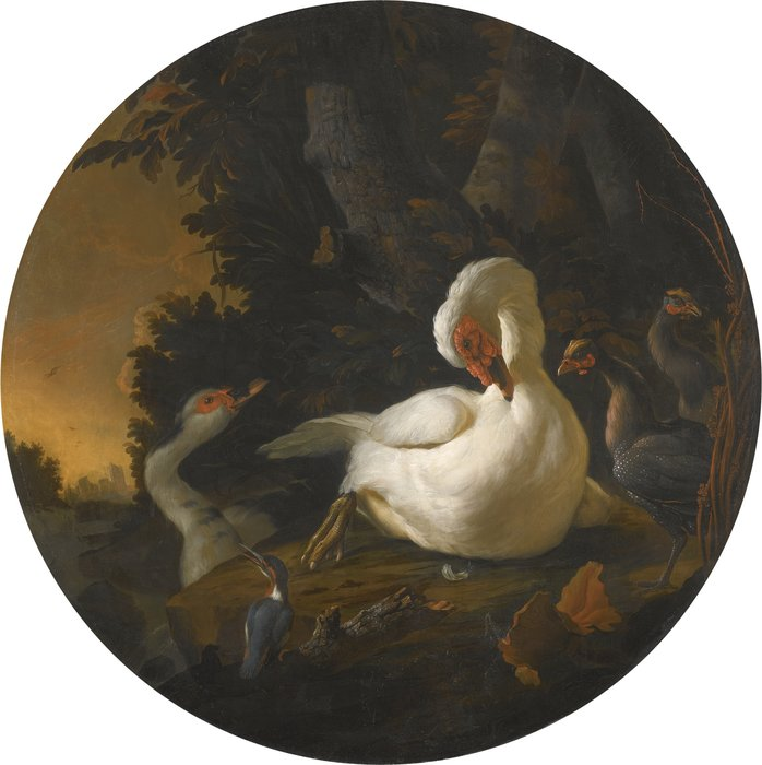 A mute swan, a goose, and other fowl on a wooded river bank by Abraham Bisschop (1670-1729, Netherlands)