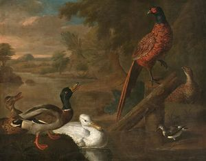 Order Oil Painting : Birds in a landscape by Abraham Bisschop (1670-1729, Netherlands) | WahooArt.com