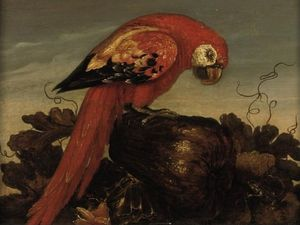 Abraham Bosschaert - Parrot sitting on a large vegetable, eying a small lizard