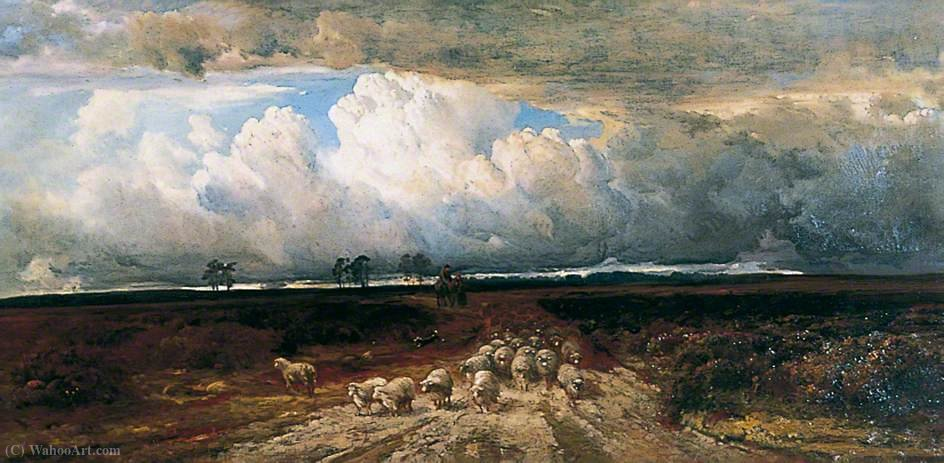 Driving Home the Flock by Bernard Walter Evans (1843-1922, United Kingdom) | Museum Quality Copies Bernard Walter Evans | WahooArt.com