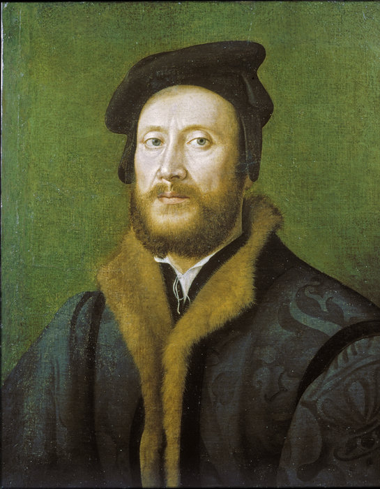 Portrait of a Bolognese Gentleman in a Fur-lined Coat by Giuliano Bugiardini (1475-1555, Italy) | Reproductions Giuliano Bugiardini | WahooArt.com