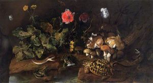 Paolo Porpora - Still Life with a Snake, Frogs and a Tortoise