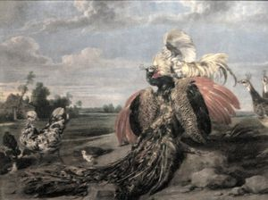 Paul De Vos - Peacock and Cock Fighting