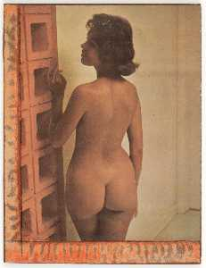 Joseph Cornell - Untitled (standing nude brunette by cinderblock wall)