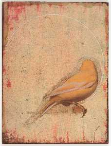 Joseph Cornell - Untitled (yellow canary with back turned)