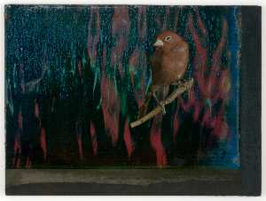 Joseph Cornell - Untitled (red and blue water reflections)