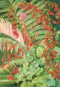 Marianne North - Fern and Flowers Bordering the River at Chanleon, Chili