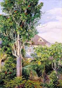Marianne North - The Garden of King's House, Spanish Town, Jamaica