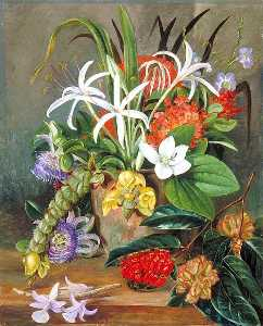 Marianne North - Group of Cultivated Flowers
