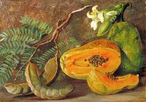 Marianne North - Foliage and Fruit of the Tamarind, and Flowers and Fruit of the Papaw in Java